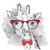 Bild-Porträtgiraffe in der Krawatte und mit Gläsern Vektorillustration des Handabgehobenen betrages Stockfotos