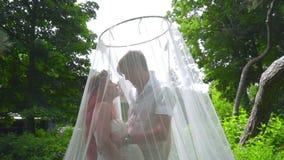 Bild schoss im Studio Schwangere Paare, die hinter Hochzeitsschleier am Park küssen stock video
