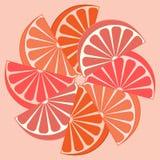 Bild von appetitanregenden orange Scheiben auf einem weißen Hintergrund Stockbild