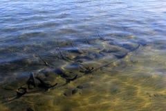 Bild von Bateau ` Wrack ` Replik, gelegt in seichtes Wasser von See George, New York, 2016 lizenzfreie stockfotografie