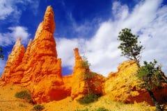 Bild von Bryce Canyon stockfoto