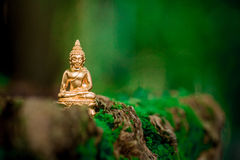Bild von Buddha Stockbilder