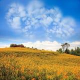 Bild von eine Herzwolke auf blauem Himmel Lizenzfreies Stockbild