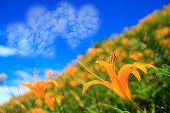Bild von eine Herzwolke auf blauem Himmel Stockbilder
