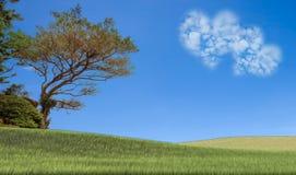Bild von eine Herzwolke auf blauem Himmel Stockbild