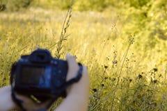 Bild von weiblichen Händen mit einer Kamera lizenzfreies stockfoto