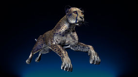 Bilden av en gepard Royaltyfria Foton