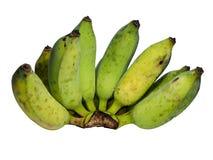Bilden av isolerade bananer Royaltyfria Bilder