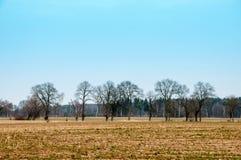 Bilden av jordbruksmark Arkivbild