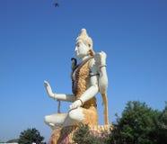 Bilden av Lord Shiva framme inom träd på Gujrat i Indien fotografering för bildbyråer