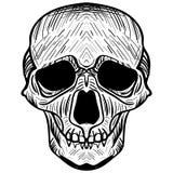 Bilden av skallen också vektor för coreldrawillustration Royaltyfri Fotografi