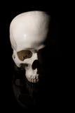 bilden för black för bakgrund 3d framförde den mänskliga skallen Royaltyfri Foto