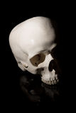 bilden för black för bakgrund 3d framförde den mänskliga skallen Arkivfoton