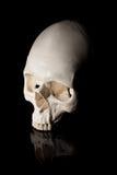 bilden för black för bakgrund 3d framförde den mänskliga skallen Royaltyfria Bilder