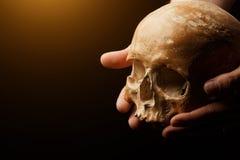 bilden för black för bakgrund 3d framförde den mänskliga skallen Signalljuseffekt Fotografering för Bildbyråer