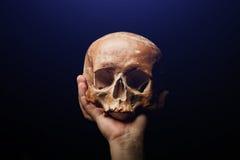 bilden för black för bakgrund 3d framförde den mänskliga skallen Signalljuseffekt Arkivfoto