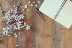 Bilden för den bästa sikten av trädet för körsbärsröda blomningar för våren det vita, öppnar den tomma anteckningsboken bredvid t Royaltyfri Bild