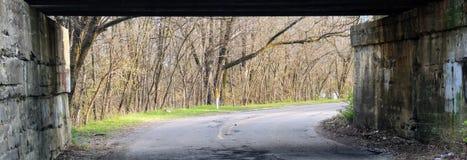Bilden Sie Brücke über städtischen Seitenstraßegraffiti, mit Baumreihe im Vorfrühling in Indianapolis Indiana, Vereinigte Staaten Stockbilder