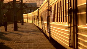 Bilden Sie dass Blätter von der Plattform während des Sonnenuntergangs aus stock video footage