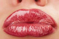 Bilden Sie von den hellen Lippen stockfotografie