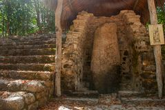 Bilder auf dem Stein vom alten Maya Coba, Mexiko, Yucatan stockbild
