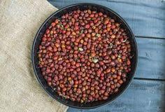 Bilder av nyponet bär frukt torkat i ett magasin och att torka nyponet som torkar nypon för att dricka nyponte Arkivbild
