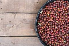 Bilder av nyponet bär frukt torkat i ett magasin och att torka nyponet som torkar nypon för att dricka nyponte Royaltyfri Bild