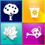 Bilder av trädgårds- träd, blomkrukor, trädgårds- bevattna can, lång skugga för höstblad Royaltyfria Bilder