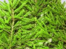 Bilder des neuen Jahres und des Weihnachten Stockfoto