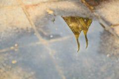 Bilder des Tempels reflektiert im Wasser Lizenzfreies Stockbild