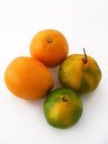 Bilder von den Orangen- und Mandarinenfrüchten passend für Verpackungsgestaltung Stockbild