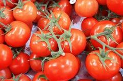 Bilder von vielen bündeln Tomaten innerhalb des Falles Stockfoto