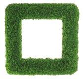 Bilderrahmen des grünen Grases Lizenzfreies Stockfoto