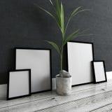 Bilderrahmen und Topfpflanze innerhalb des modernen Hauses Stockbilder