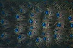 Bildhand som målas med aquarellen Royaltyfri Foto