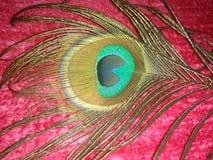 Bildhand som målas med aquarellen Arkivfoton