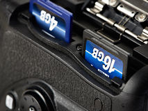 Bildkort för två SD in camera Arkivfoto