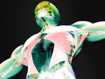 Bildläsning av den mänskliga bröstkorgen Arkivfoto
