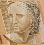 Bildnis der Republik von Brasilien Lizenzfreie Stockfotos