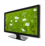 Bildschirmanzeigefernsehapparat und Blumen Stockfoto