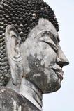 Bildspråk för Buddha huvudflank Royaltyfri Foto