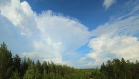Bildung einer Cumulonimbuswolke über nördlichem Wald Lizenzfreie Stockfotografie