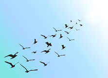 Bildung von Fliegen waterbirds Stock Abbildung