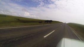 Bilen g?r p? v?gen visa f?nstret Framåt av en flock av hästar korsar vägen afton Olkhon öar stock video