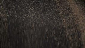Bilen lastar av korn våldtar lager videofilmer