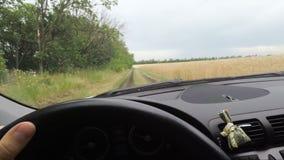 Bilen rider längs landsvägen mellan fält, bil för sikt från inre stock video
