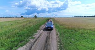 Bilen rider på en landsväg längs ett vete Härligt landskap från höjden Skjuta på surret arkivfilmer