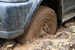 Bilen rullar i mud i skogen Royaltyfri Bild