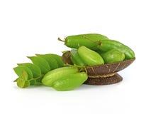 Bilimbi owoc Azja Południowo-Wschodnia Zdjęcie Stock