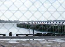 Bilimporter på hamnplatsen som beskådas till och med fäktning på Auckland, ny Zea Royaltyfria Foton